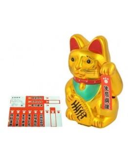 Kot japoński złoty